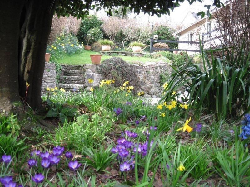 garden-house-thro-flowers-2