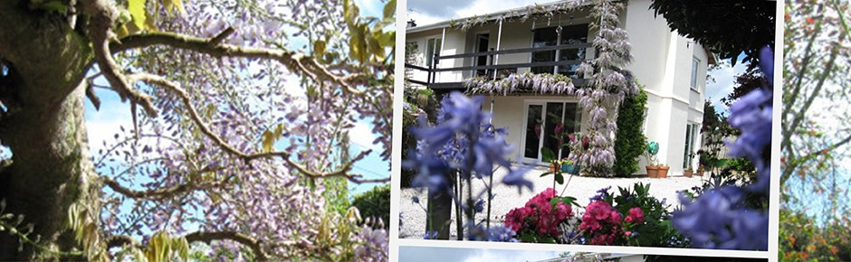 the_garden_house_slider_wisteria